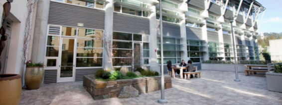 DBC Courtyard outside NNC office
